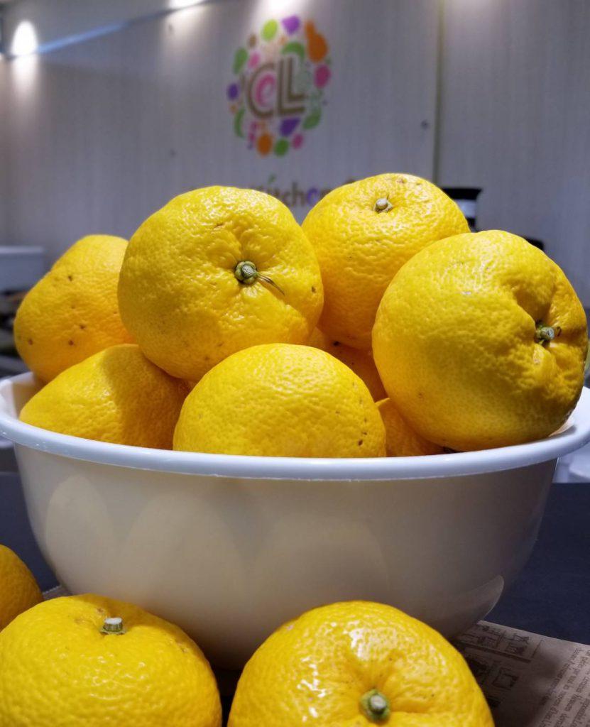 フルーツ酵素で作るスカッシュです。
